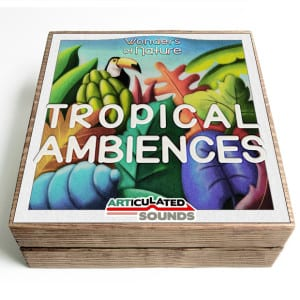 TropicalAmbiences_InAWoodBox_square