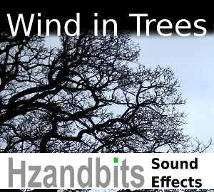 WindInTrees_sonniss